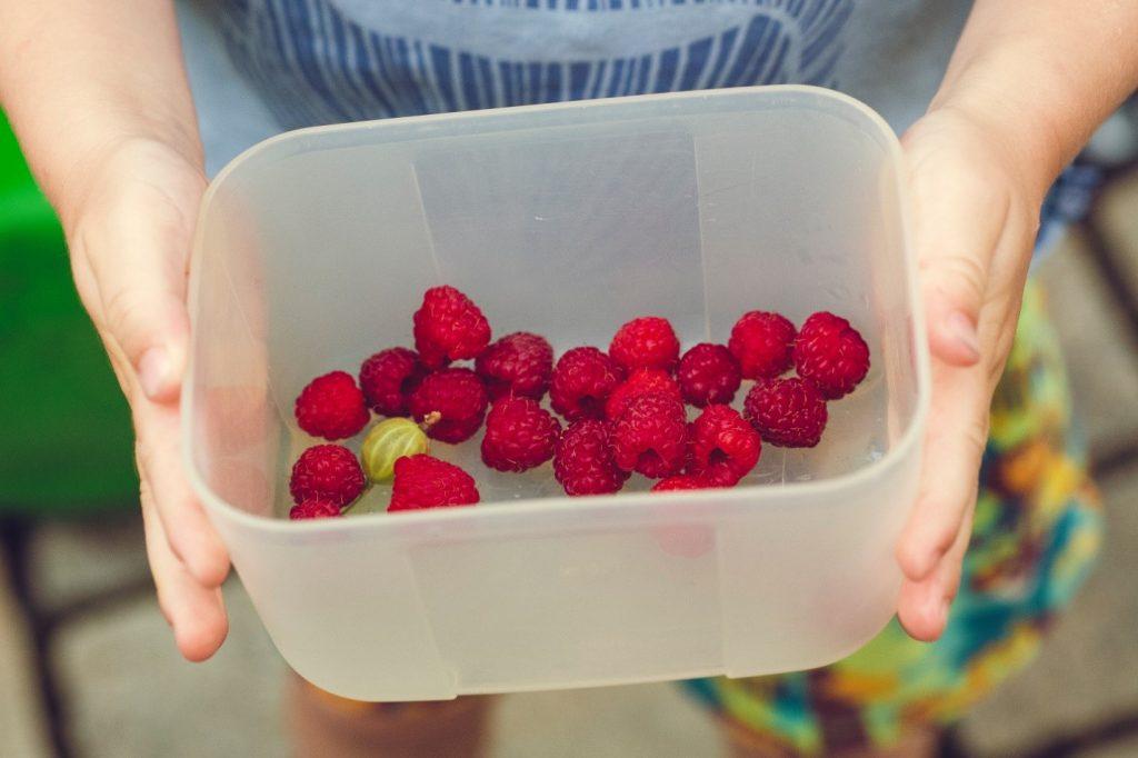 Healthy Alternative Snacks For Kids