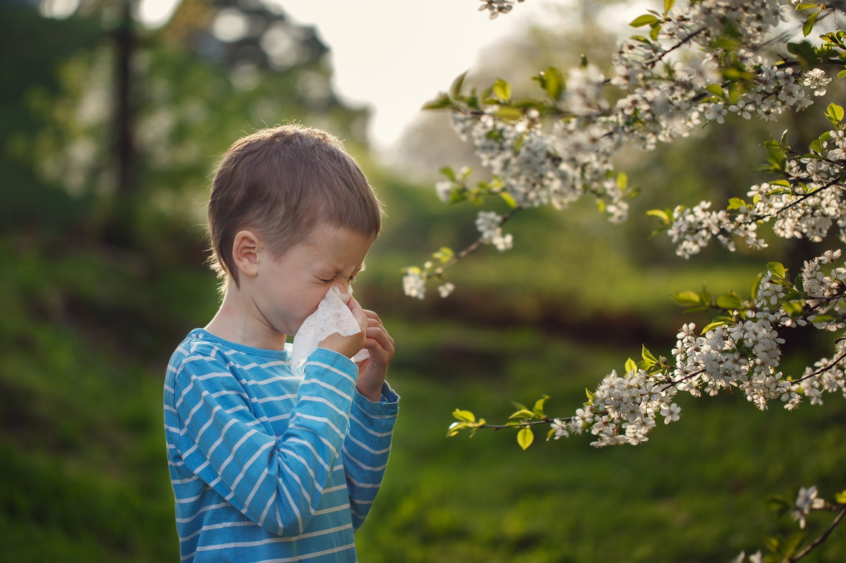 Little boy is blowing his nose near blossoming flowers